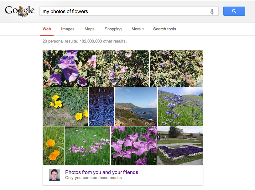 Mes photos de Fleurs - Google+